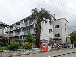 神代ハイツ[2階]の外観