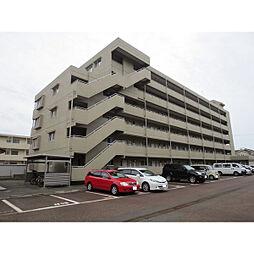 新潟県新潟市中央区鐙西1丁目の賃貸マンションの外観