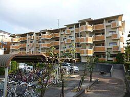 T・フリーデンハイムII[2階]の外観