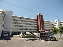 東山本ハイツ[131号室]の外観