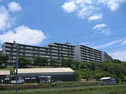 美加の台南海アーバンコンフォート 弐番館[827号室]の外観