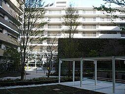 豊洲レジデンスB棟[5階]の外観