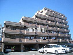 ベルマイン[5階]の外観
