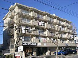サンビューマンション中京[205号室]の外観