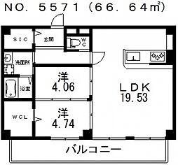 仮称)寺田町1丁目新築マンション[501号室号室]の間取り