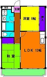 静岡県磐田市上本郷の賃貸マンションの間取り