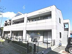 神奈川県伊勢原市上粕屋の賃貸マンションの外観