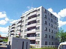 茨城県つくば市天久保1丁目の賃貸マンションの外観
