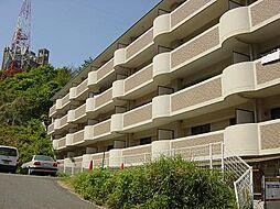 カーサ古江[2階]の外観