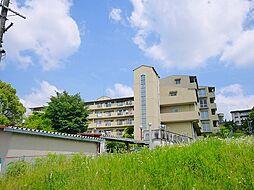奈良県奈良市秋篠町の賃貸マンションの外観