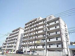 第3元木ビル[3階]の外観