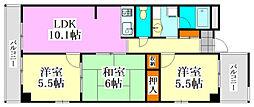 千葉県習志野市大久保2丁目の賃貸マンションの間取り