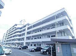 サンフェリカ長行[4階]の外観