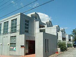 埼玉県さいたま市中央区大戸5丁目の賃貸マンションの外観