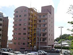 稲元ビル東伊場[5階]の外観