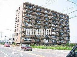 シャトレ愛松稲沢II[5階]の外観