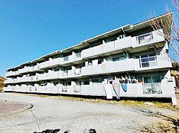 千葉県茂原市緑ケ丘5丁目の賃貸マンションの外観