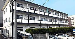 洋明ハイツ[3階]の外観