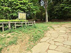 万葉公園まで969m