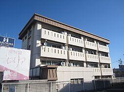 第2マルカネビル[4階]の外観