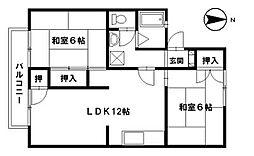 石川県野々市市野代3丁目の賃貸アパートの間取り