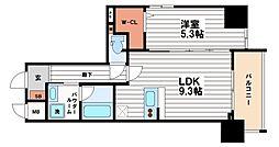 ドミツィール福[2階]の間取り