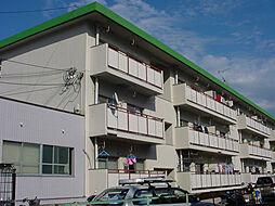摂津ハイツ[305号室]の外観