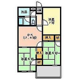 静岡県三島市中田町の賃貸マンションの間取り