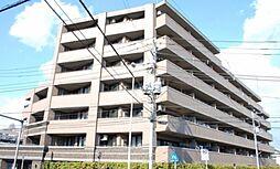 ナイスシティアリーナ横濱新子安[6階]の外観