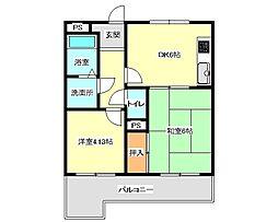 兵庫県神戸市垂水区星が丘1丁目の賃貸マンションの間取り