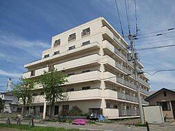 メゾンド村井[205号室]の外観