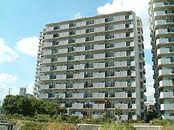兵庫県伊丹市中野西3丁目の賃貸マンションの外観