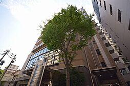 シティコート中陽[5階]の外観