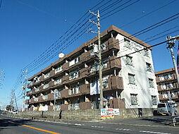 桜下マンション[202号室]の外観