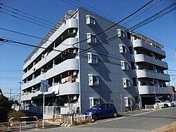 千葉県市川市柏井町1の賃貸マンションの外観