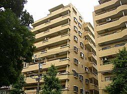 神奈川県横浜市中区弥生町3丁目の賃貸マンションの外観
