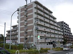 ヒュースー丘弐番館[208号室]の外観