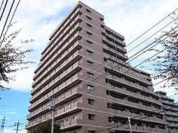 ベェルヴェル稲城[4階]の外観