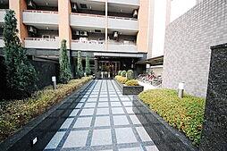 第21関根マンション[13階]の外観