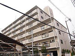 ブルックパレス[6階]の外観