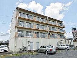 滋賀県湖南市三雲の賃貸マンションの外観