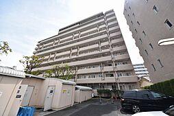 テラス竹ノ塚イースト[8階]の外観