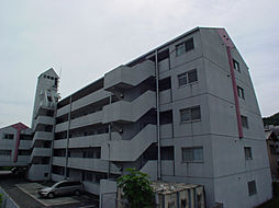 シャトー三和青山[501号室]の外観