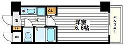 インターナショナル上汐[6階]の間取り