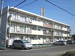 アーバンコート東赤塚[203号室]の外観