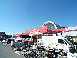 [一戸建] 広島県広島市安佐南区祇園8丁目 の賃貸【/】の外観