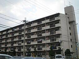 大阪府岸和田市上松町の賃貸マンションの外観