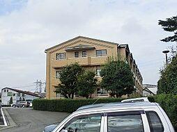 陽東2丁目 3SLDK マンション[3階]の外観