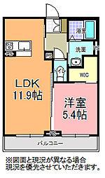 リッツガーデン元吉田[305号室]の間取り