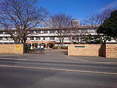 小学校水戸市立笠原小学校まで1504m
